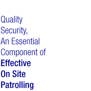Quality Patrolling for Security